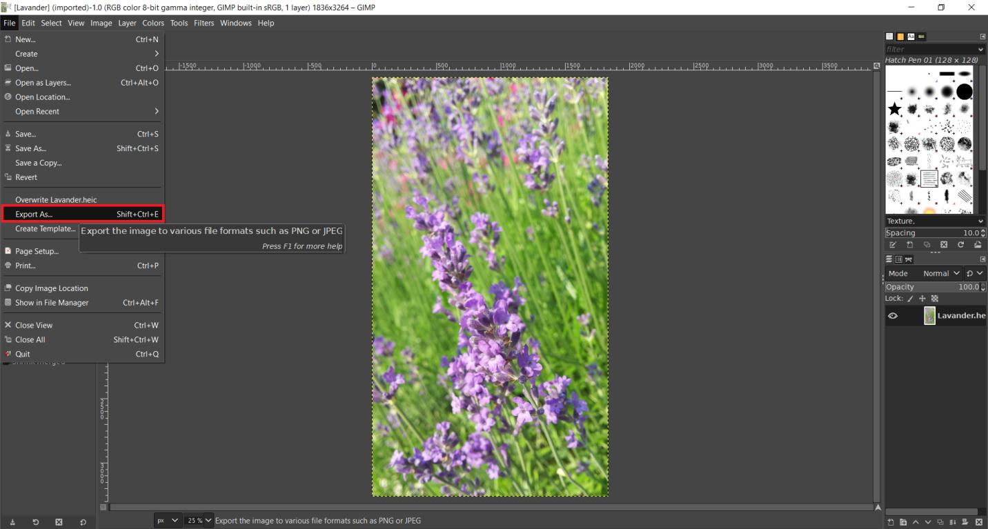 Open HEIC photo in GIMP