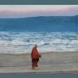 bhikkhunisobhana