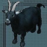 GoatTracker
