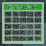 Bingo Caller