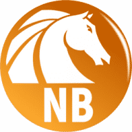 AKVIS Noise Buster free download for Mac