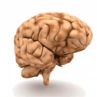 Brain Tease free download for Mac