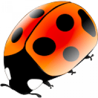 Coccinellida free download for Mac