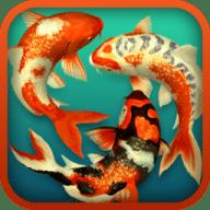 Koi Pond 3D free download for Mac
