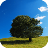NatureWall free download for Mac