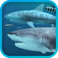 Sharks 3D free download for Mac