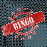 My Bingo Cards
