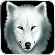 Shiver: Moonlit Grove free download for Mac
