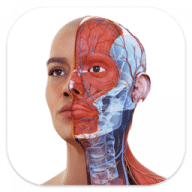 Complete Anatomy free download for Mac