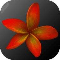 Plumeria Smart Creator free download for Mac