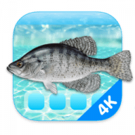 Aquarium 4K free download for Mac
