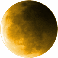 Pale Moon free download for Mac