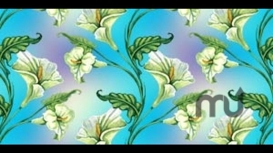 SymmetryShop for Mac - review, screenshots