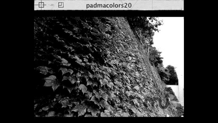padmacolors20 for Mac - review, screenshots