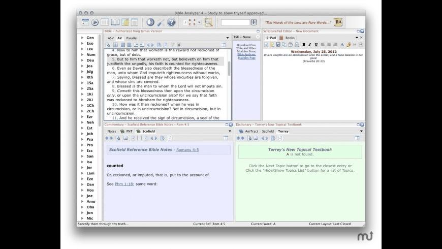 Bible Analyzer for Mac - review, screenshots