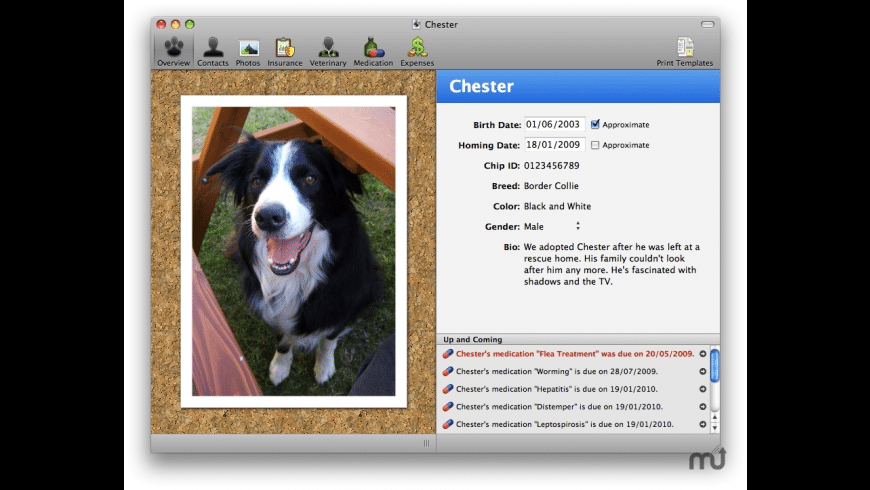 Clarus for Mac - review, screenshots