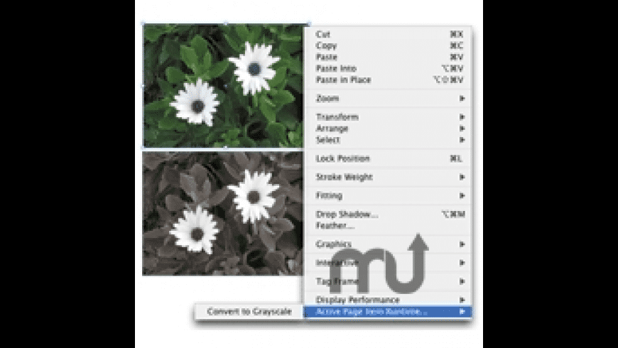 Color2Gray for InDesign for Mac - review, screenshots