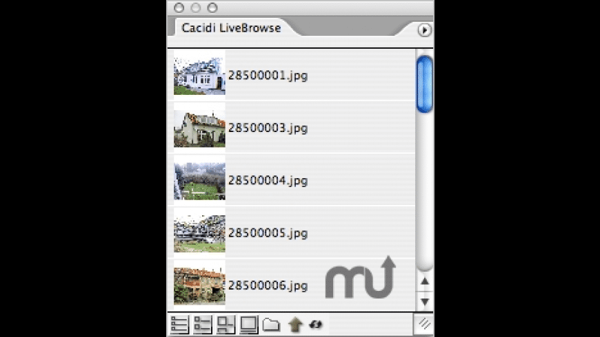 Cacidi LiveBrowse for Mac - review, screenshots