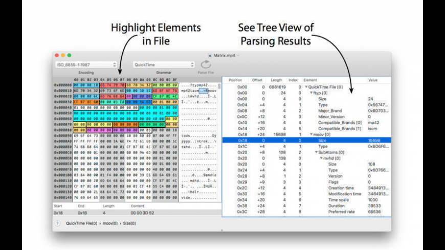 Synalyze It! for Mac - review, screenshots