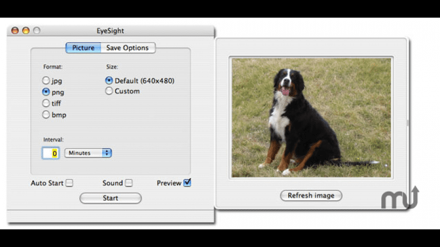 EyeSight for Mac - review, screenshots