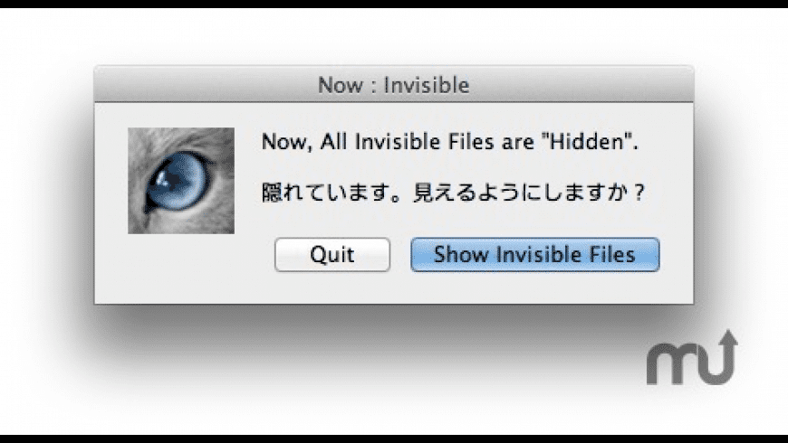 Cat_Invisible for Mac - review, screenshots