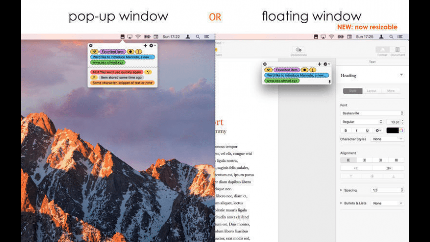 Mannote for Mac - review, screenshots