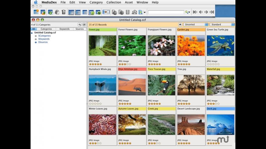 MediaDex for Mac - review, screenshots