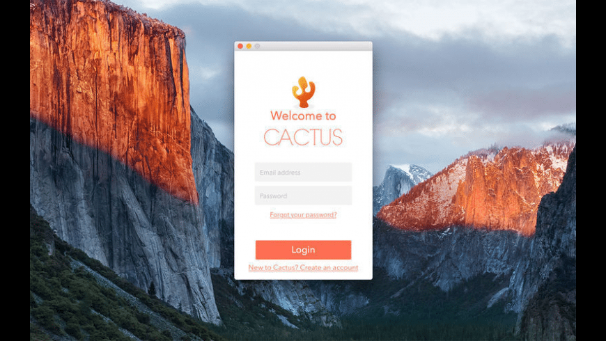 Cactus Music for Mac - review, screenshots
