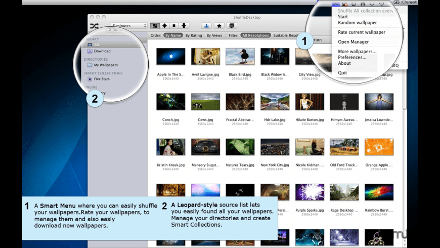 Shuffle Desktop for Mac - review, screenshots