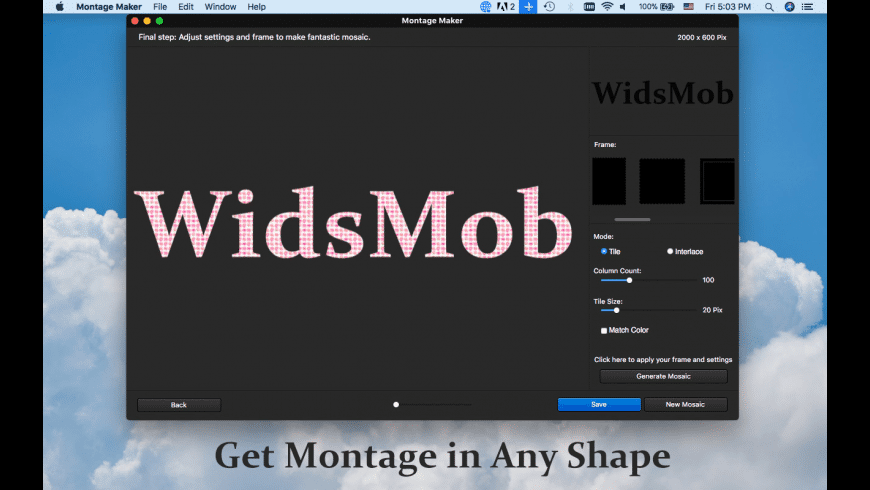 WidsMob Montage for Mac - review, screenshots
