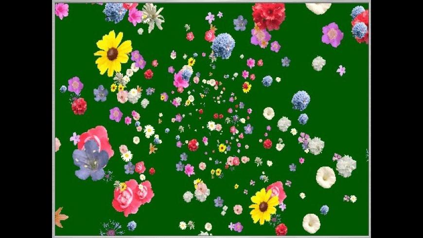 DHG-FlowerPowerFlow for Mac - review, screenshots