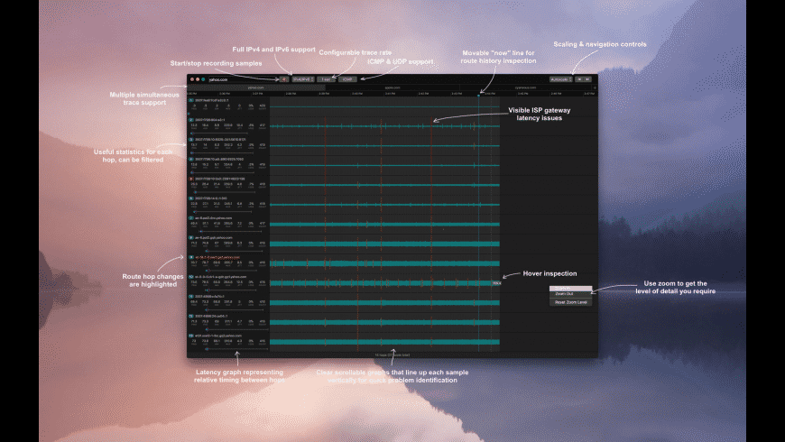 PingDoctor for Mac - review, screenshots