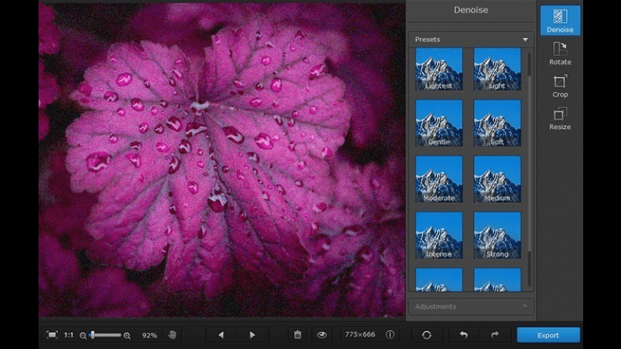 Movavi Photo DeNoise for Mac - review, screenshots