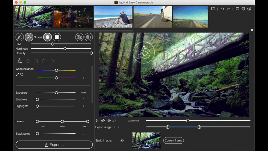 liquivid Easy Cinemagraph for Mac - review, screenshots