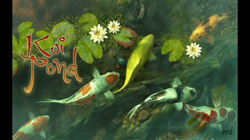 Koi Pond 3D for Mac - review, screenshots