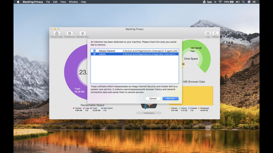 BlackFog Privacy for Mac - review, screenshots