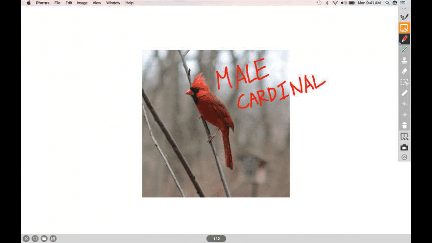 IPEVO Annotator for Mac - review, screenshots