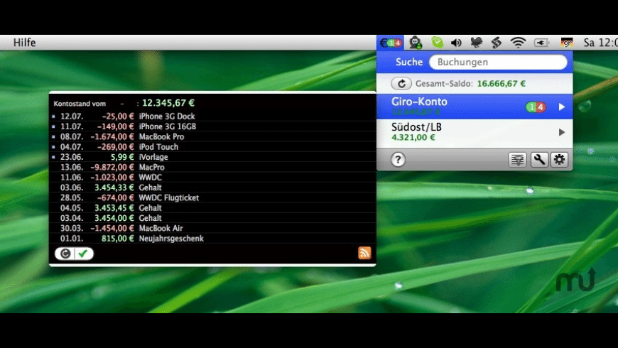 Saldomat for Mac - review, screenshots