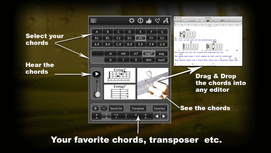 120 Banjo Chords for Mac - review, screenshots