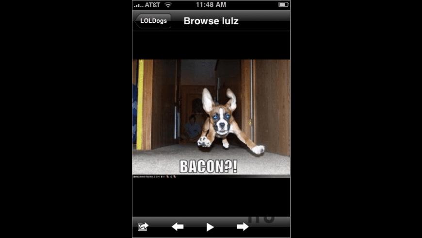 LOLDogs Free for Mac - review, screenshots