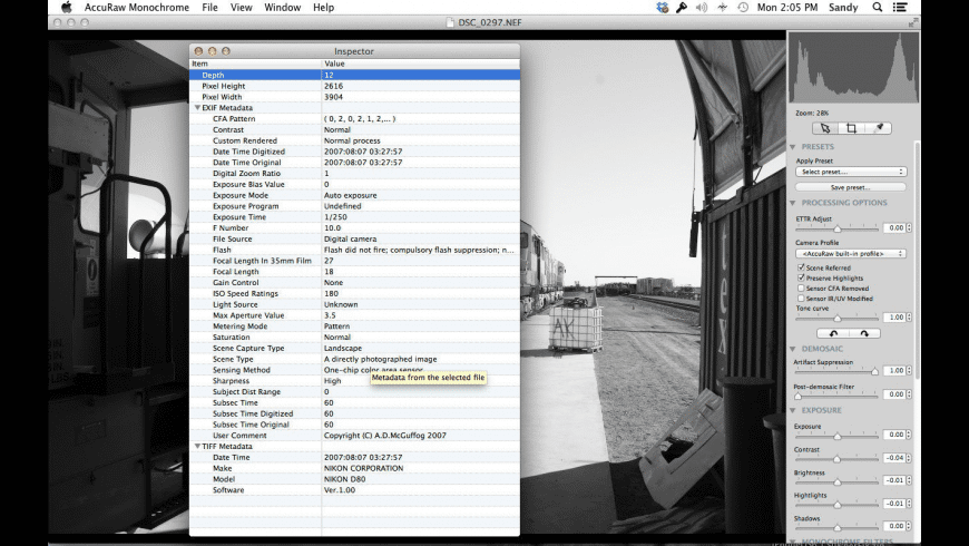 AccuRaw Monochrome for Mac - review, screenshots