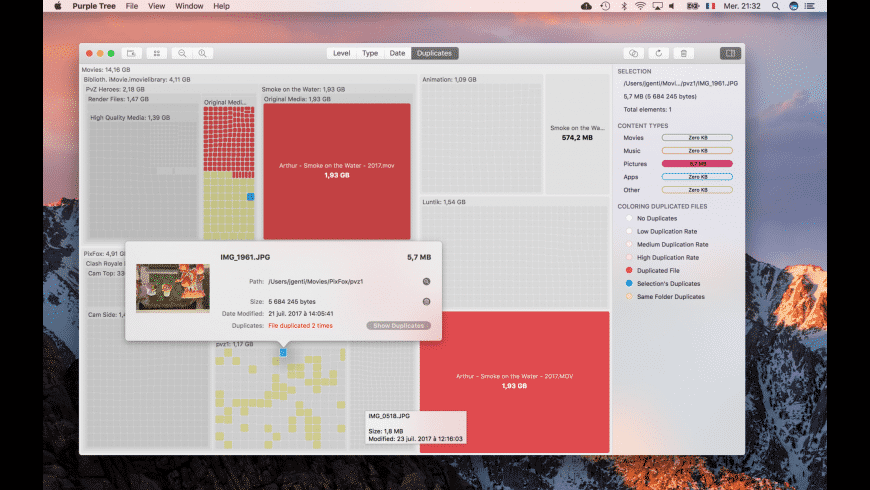 Purple Tree for Mac - review, screenshots