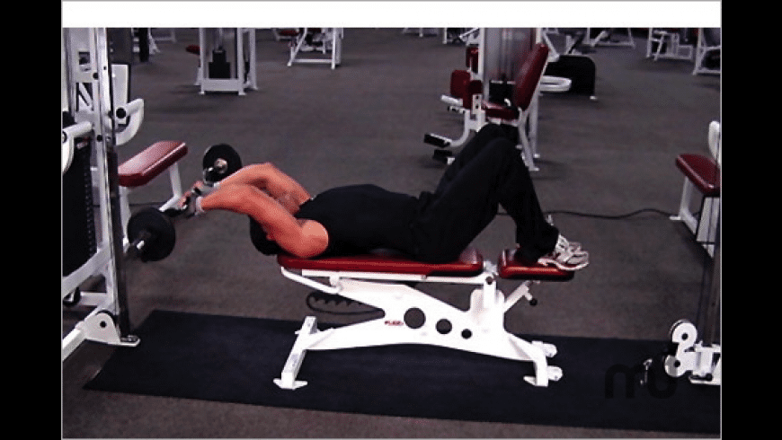 Definition Fitness: Biceps Triceps Supersets for Mac - review, screenshots