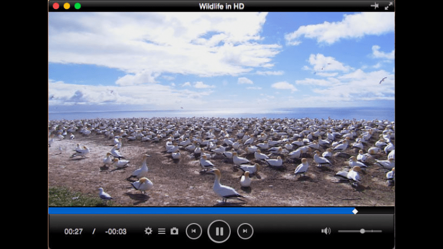 Total Video Player Pro for Mac - review, screenshots