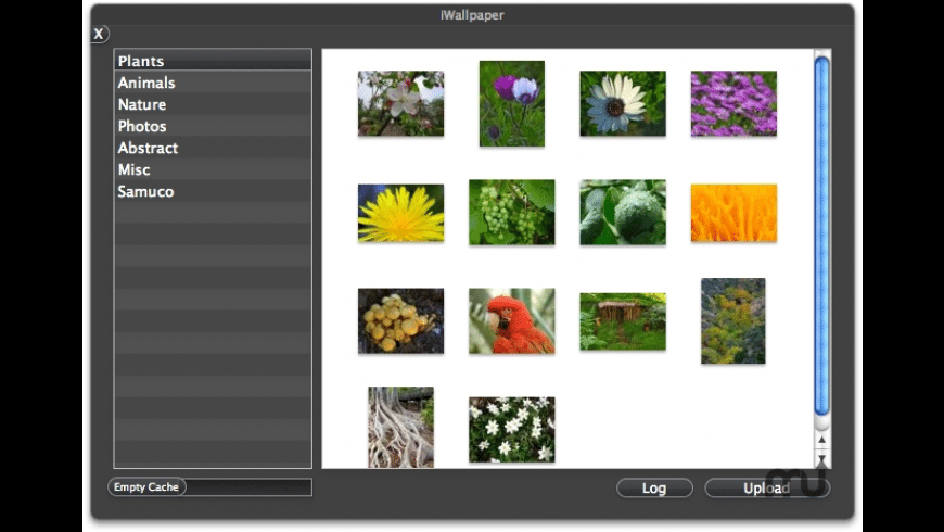 iWallpaper for Mac - review, screenshots