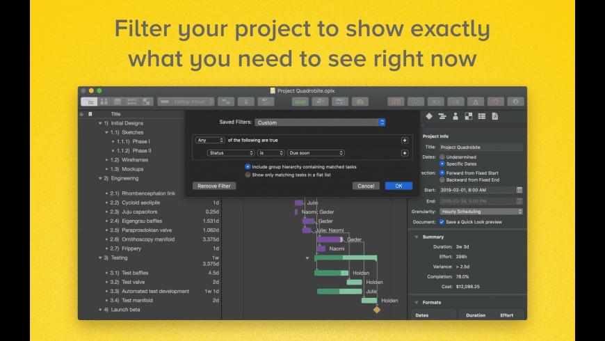 OmniPlan Pro for Mac - review, screenshots