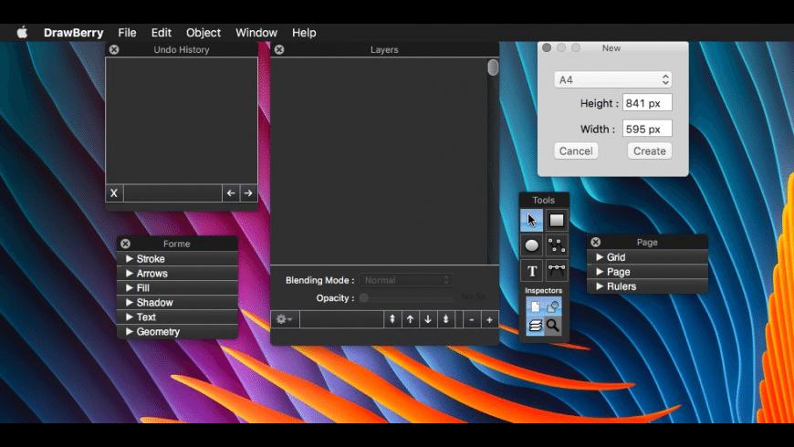 DrawBerry for Mac - review, screenshots