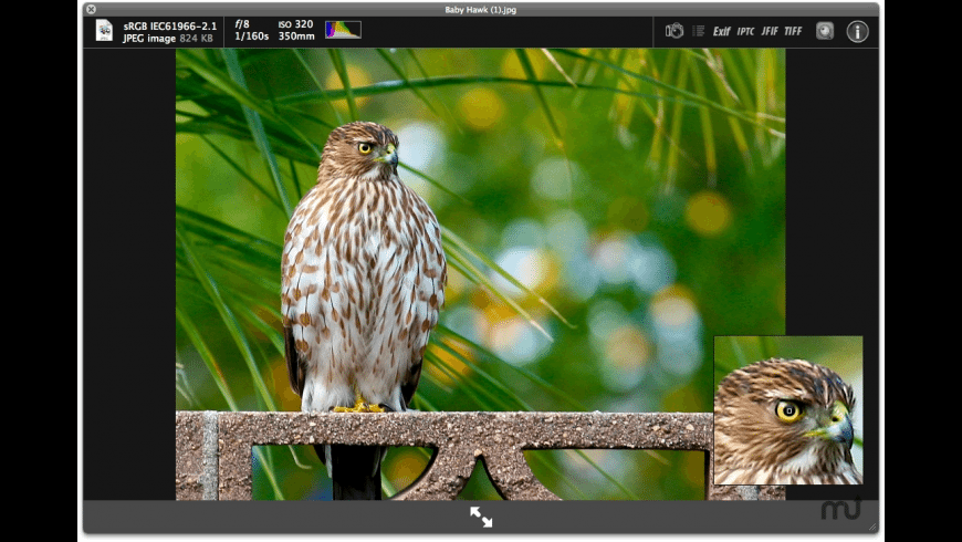 SneakPeek Photo for Mac - review, screenshots