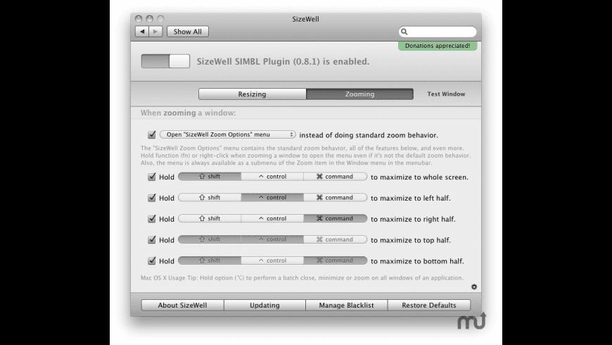 SizeWell for Mac - review, screenshots