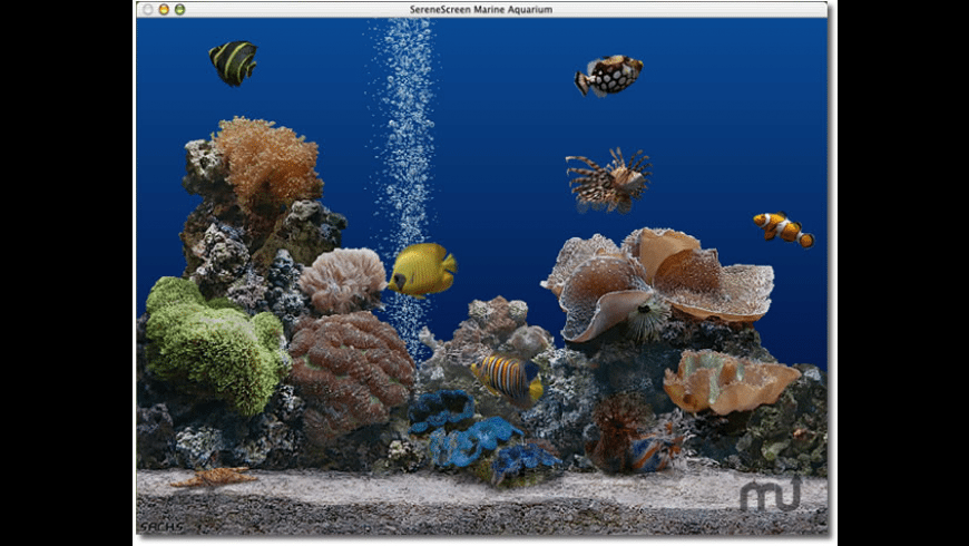 Marine Aquarium for Mac - review, screenshots